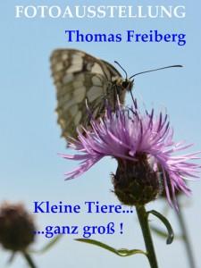 Ausstellung Thomas Freiberg