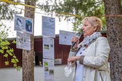 Quartiersratswahlen im Falkenhagener Feld West (Foto: www.salecker.info)
