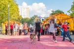 stadtteilfest_ff_2015_ralf_salecker-5221