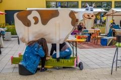 stadtteilfest-2017-DSCF9552
