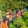 Spandauer Quartiersgebiete zu Besuch in der Gartenarbeitsschule Spandau